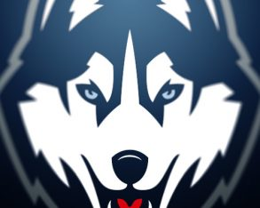 UConn Nation – Brand Unification